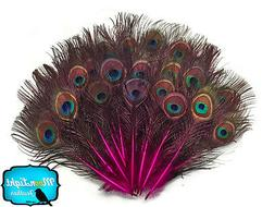 10 Pieces - HOT PINK MINI Natural Peacock Tail Body feathers